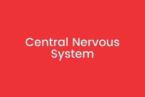 3 Central Nervous System